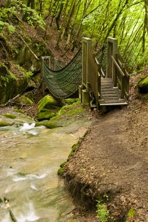 On the Hiking Trail Eifelsteig in the Eifel, Germany photo