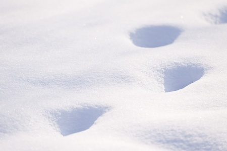 Snow Cover with Foot Steps