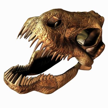 t rex: Illustratie van een T-Rex Skull Stockfoto
