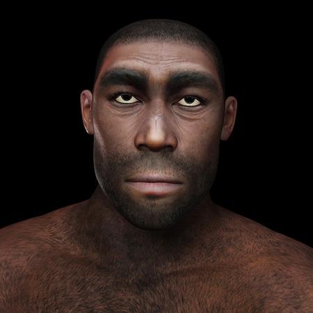 erectus: Ilustraci�n digital de un Homo Erectus Foto de archivo