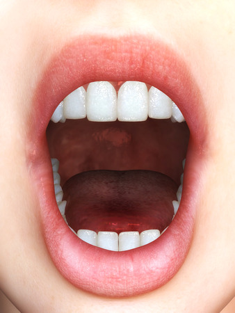 opened mouth: Digital Illustration of a female Mouth