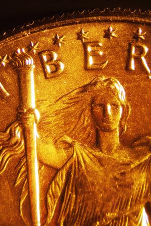 Micro Photo of a Gold Coin photo