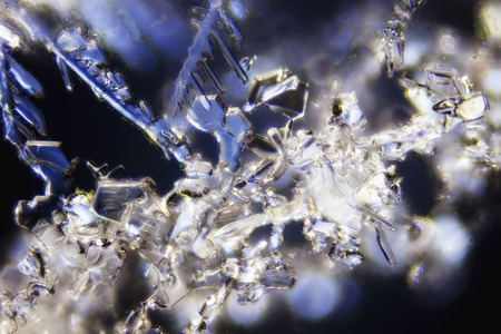Micro Photo of Snow Crystals photo