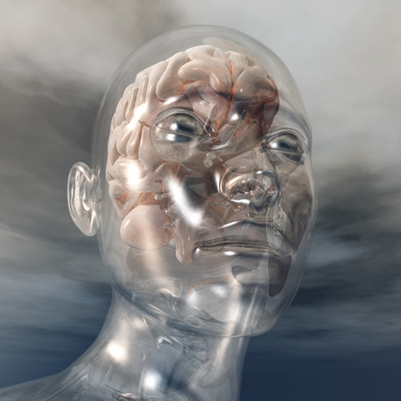 clear out: Digital visualization of a human brain Stock Photo