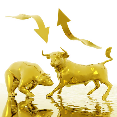 stock market chart: Digital Illustration of Bull and Bear