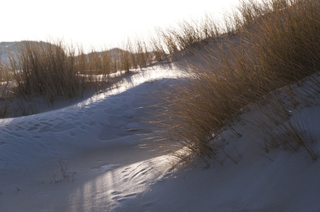 nen: Dunes on the North Frisian Island Amrum in Germany Stock Photo