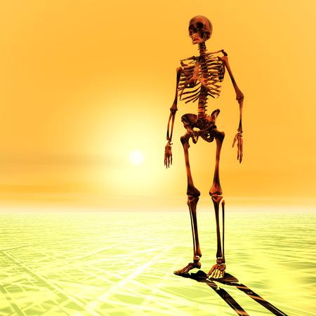 barren: Digital Illustration of a Skeleton Stock Photo