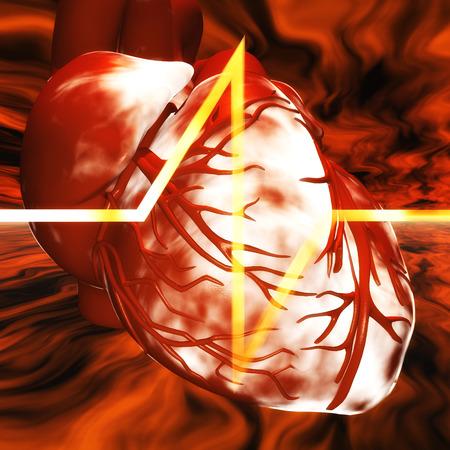infarct: Digital Illustration of a human Heart Stock Photo