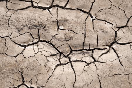 parched: Parched Soil