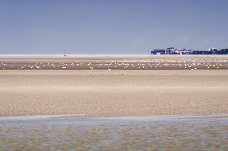 pile dwelling: On the Beach of St. Peter-Ording in Germany