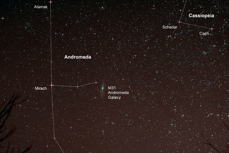 astro: Astro Photo: Starfield with Andromeda Galaxy
