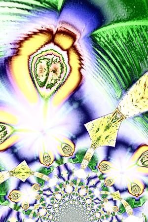 acido: Microcristales de ácido tartárico en luz polarizada  Foto de archivo