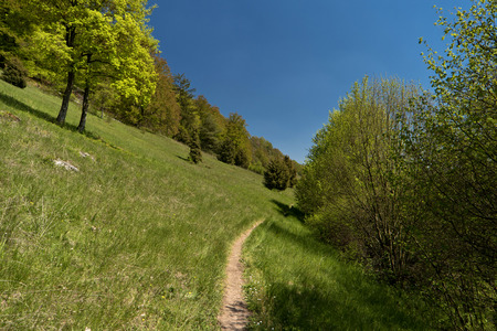 heathen: On the Altmuehltal Panorama Trail in Germany