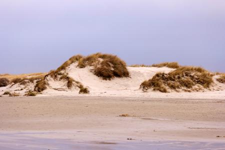Landscape on North Frisian island of Amrum in Germany