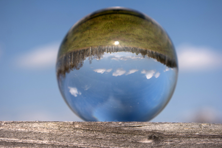 Swamp Landscape in a Glass Ball Stock Photo