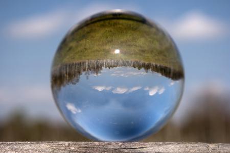 eye ball: Swamp Landscape in a Glass Ball Stock Photo