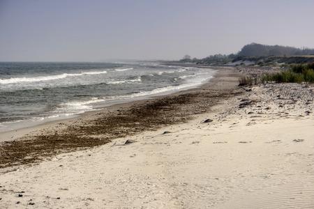 Ostseeküste in der Nähe von Ahrenshoop in Deutschland Standard-Bild - 90173355