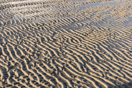 Ripple Marks on the North Frisian Island Amrum in Germany Banque d'images