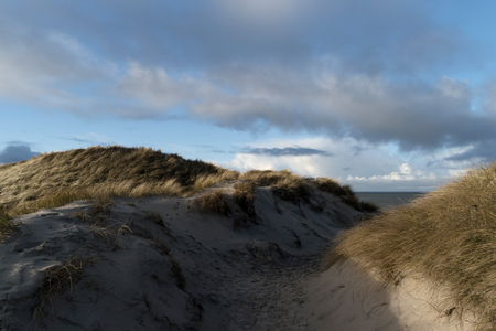 Dunes on the North Frisian Island Amrum in Germany Stock Photo