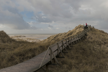 Dunes on the North Frisian Island Amrum in Germany Banque d'images