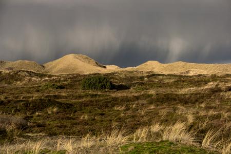 Dunes on the North Frisian Island Amrum in Germany Stock Photo