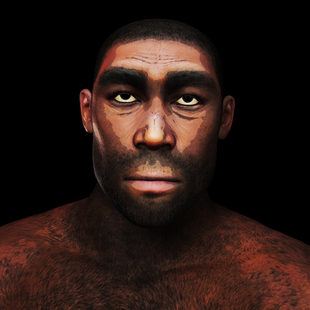 Digital 3D Illustration of a Homo Erectus Banco de Imagens - 104318353