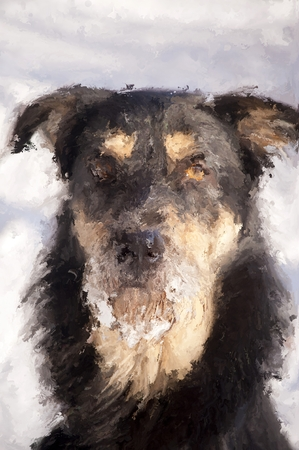 Digital Painting of bearded Dog in Winter Standard-Bild - 106076997