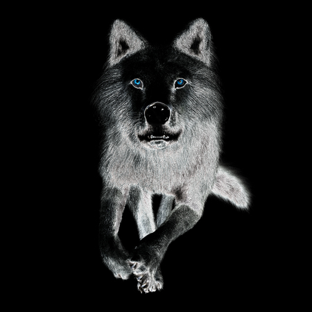 Digital 3D Illustration of a Wolf Stock Photo