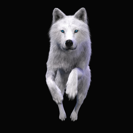 Digital 3D Illustration of a Wolf Stok Fotoğraf
