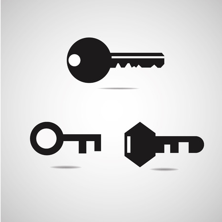 Vector Key Icon Set  Vector