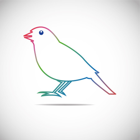birds  Finch Vector