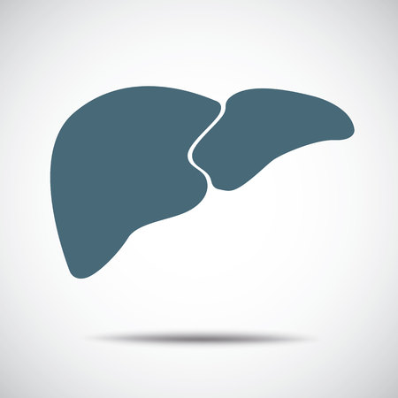 bile: liver icon Illustration