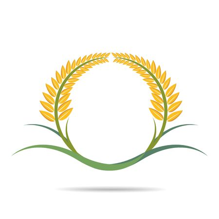 wheat on white, agricultural vector illustration Illustration