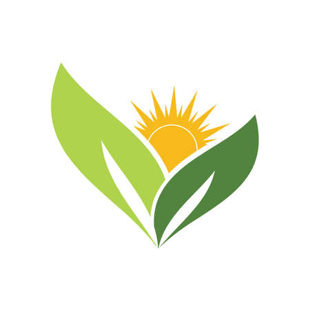 Eco Natural Sun leaf green nature symbol template Vector