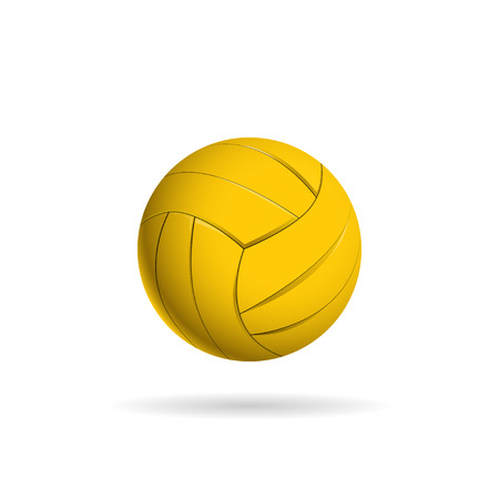 polo ball: Water polo ball  for the team and the cup. vector illustration