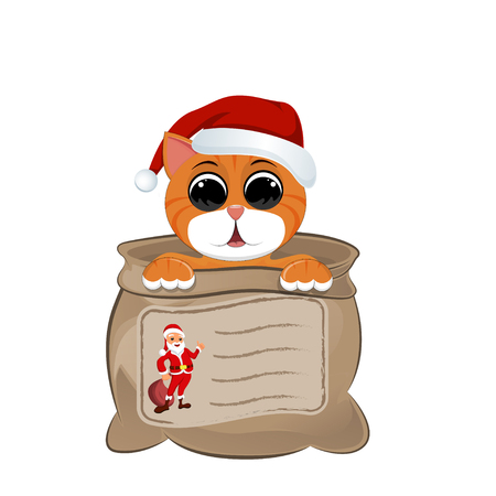 Kitten in a bag, and on it is depicted santa and place for inscription