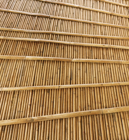Texture wood Stock Photo