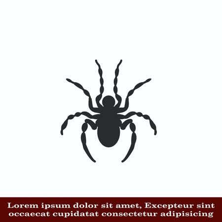 Spider icon. Wasp icon. Fly icon, vector illustration. Illustration
