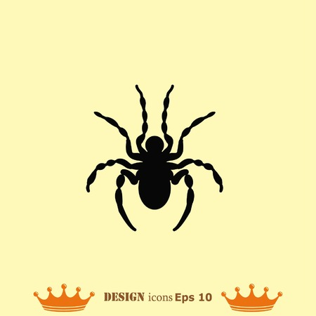 pest control: Spider icon. Wasp icon. Fly icon, vector illustration. Illustration