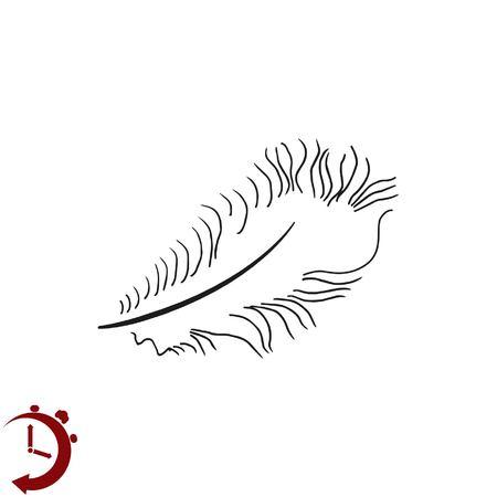icono de la pluma, plumas de cisne icono, ilustración vectorial.