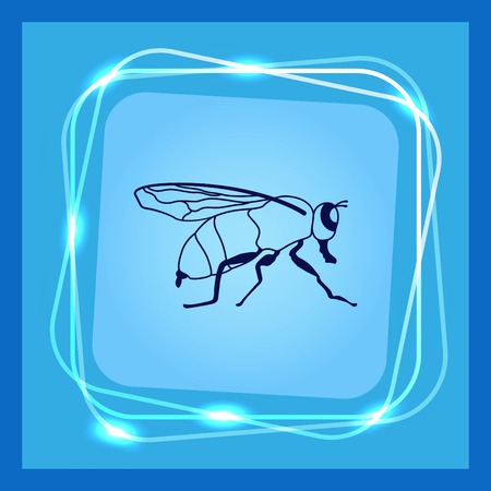 malaria: Mosquito icon. Leech icon. Wasp icon. Fly icon, vector illustration.