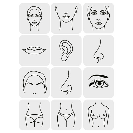 beautiful breasts: body parts icons plastic face surgery