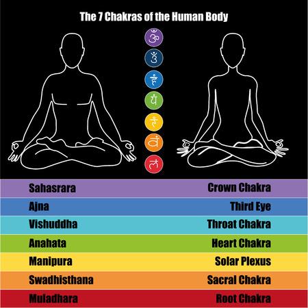 Seven chakras of the Human body