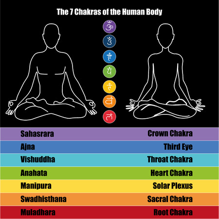 sacral: Seven chakras of the Human body