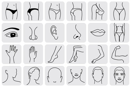 human body parts, medical vector icons. Body sculpting system Vettoriali