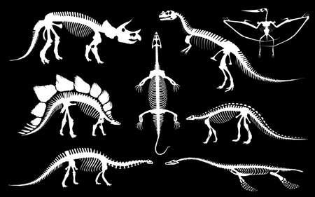 skeleton cartoon: Editable silhouettes of the skeletons of a dinosaurs Illustration