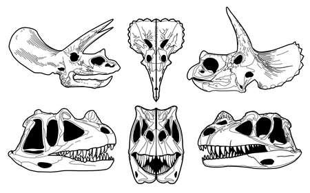 triceratops: Tyrannosaurus, triceratops skull silhouette. skeletons of a dinosaurs