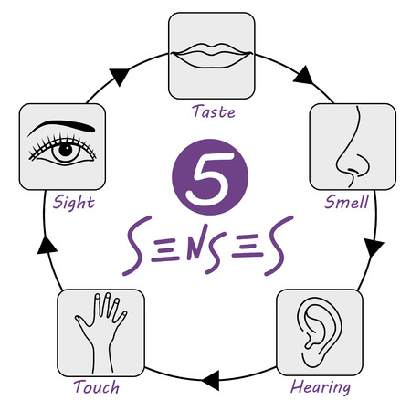 Five senses icons set