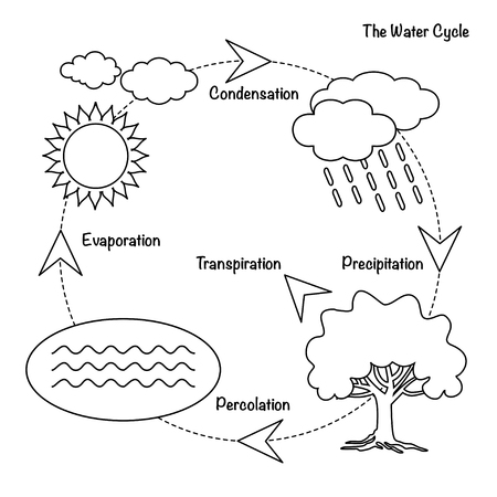 Schematic representation of the water cycle in nature. Illustration of diagram water cycle. Cycle water in nature environment.