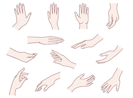 botton: Vector illustrations pack of woman hands in various gestures.